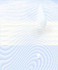 090109.jpg